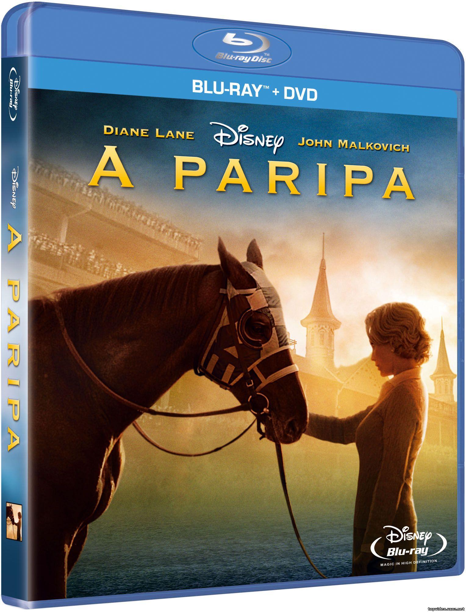 A paripa ( Secretariat )2010
